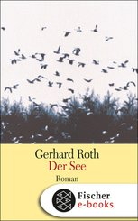 Der See (eBook, ePUB)