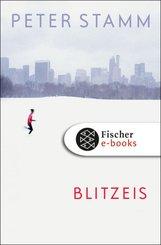 Blitzeis (eBook, ePUB)