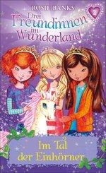 Drei Freundinnen im Wunderland: Im Tal der Einhörner (eBook, ePUB)