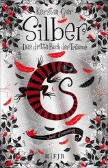 Silber - Das dritte Buch der Träume (eBook, ePUB)