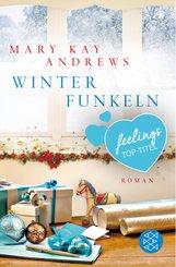 Winterfunkeln (eBook, ePUB)