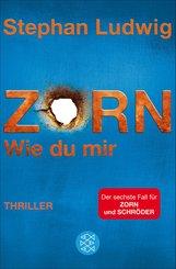 Zorn 6 - Wie du mir (eBook, ePUB)