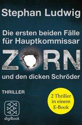 ZORN (eBook, ePUB)