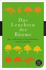Das Leuchten der Bäume (eBook, ePUB)