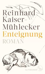 Enteignung (eBook, ePUB)