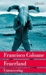 Feuerland (eBook, ePUB)
