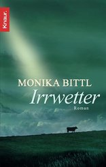 Irrwetter (eBook, ePUB)