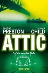 Attic (eBook, ePUB)