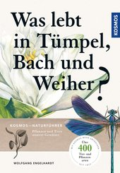 Was lebt in Tümpel, Bach und Weiher (eBook, PDF)