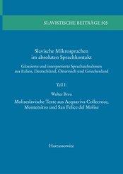 Slavische Mikrosprachen im absoluten Sprachkontakt (eBook, PDF)