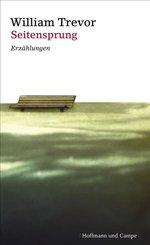 Seitensprung (eBook, ePUB)