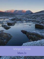 Gefangen im Schnee (eBook, ePUB)