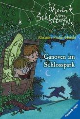 Sherlock von Schlotterfels 5: Ganoven im Schlosspark (eBook, ePUB)