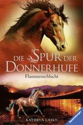 Die Spur der Donnerhufe 1: Flammenschlucht (eBook, ePUB)