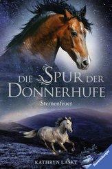 Die Spur der Donnerhufe 2: Sternenfeuer (eBook, ePUB)