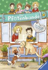 Die Pfotenbande, Band 6: Ein Freund für Lotta (eBook, ePUB)