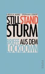 Stillstandsturm (eBook, ePUB)