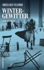 Wintergewitter (eBook, ePUB)