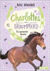 Charlottes Traumpferd 3: Ein unerwarteter Besucher (eBook, ePUB)