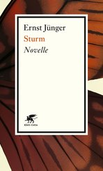 Sturm (eBook, ePUB)