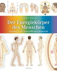 Der Energiekörper des Menschen (eBook, ePUB)