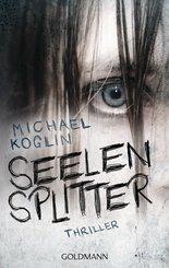 Seelensplitter (eBook, ePUB)