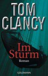 Im Sturm (eBook, ePUB)