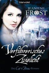 Verführerisches Zwielicht (eBook, ePUB)