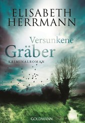 Versunkene Gräber (eBook, ePUB)