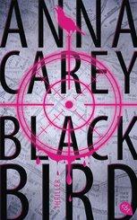 Blackbird (eBook, ePUB)