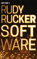 Software (eBook, ePUB)
