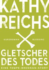 Gletscher des Todes (3) (eBook, ePUB)