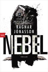 NEBEL (eBook, ePUB)