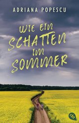 Wie ein Schatten im Sommer (eBook, ePUB)