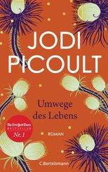 Umwege des Lebens (eBook, ePUB)