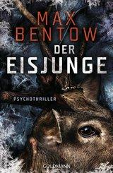 Der Eisjunge (eBook, ePUB)