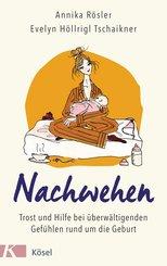 Nachwehen (eBook, ePUB)
