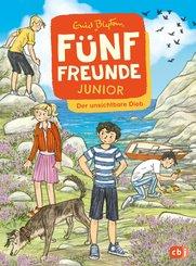 Fünf Freunde JUNIOR - Der unsichtbare Dieb (eBook, ePUB)