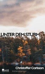 Unter dem Sturm (eBook, ePUB)