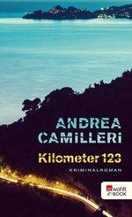 Kilometer 123 (eBook, ePUB)