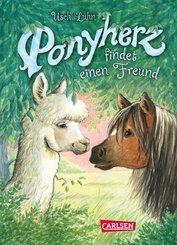Ponyherz 16: Ponyherz findet einen Freund (eBook, ePUB)