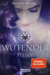 Wütender Sturm (Die Farben des Blutes 4) (eBook, ePUB)