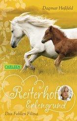 Reiterhof Erlengrund 4: Das Fohlen Filina (eBook, ePUB)