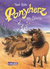 Ponyherz 14: Ponyherz im Sturm (eBook, ePUB)