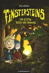 Die Finstersteins - Band 3 (eBook, ePUB)
