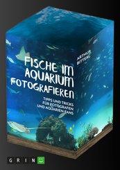 Fische im Aquarium fotografieren. Tipps und Tricks für Fotografen und Aquarien-Fans (eBook, PDF/ePUB)