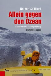 Allein gegen den Ozean (eBook, ePUB)