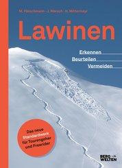 Lawinen (eBook, ePUB)