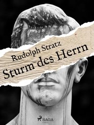 Sturm des Herrn (eBook, ePUB)
