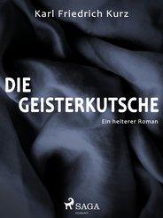 Die Geisterkutsche. Heiterer Roman (eBook, ePUB)